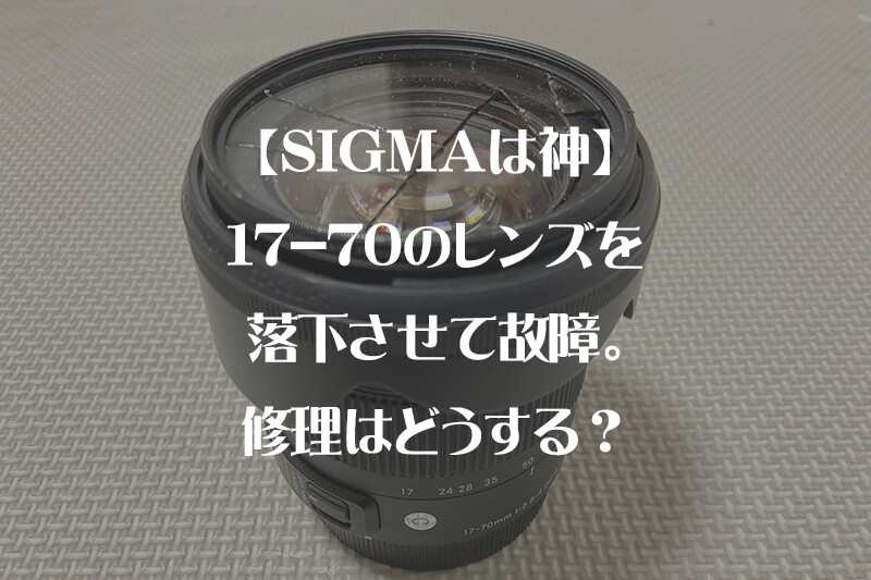 【SIGMAは神】17-70のレンズを落下させて故障。修理はどうする?